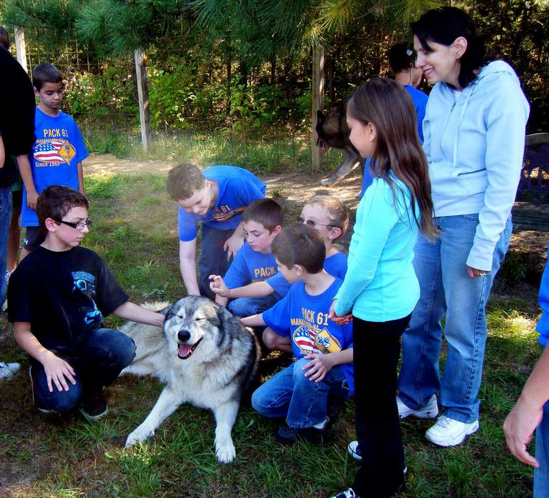 At the Farm with NJ Den 2 Pack 61 Bears Oct 2011