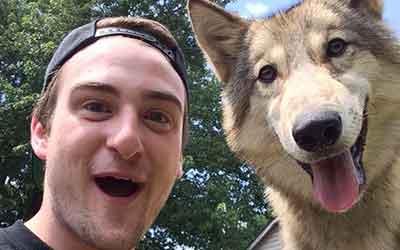 Howling Woods Farm, Wolfdogs Animal Rescue 501(c)(3) public charity NJ