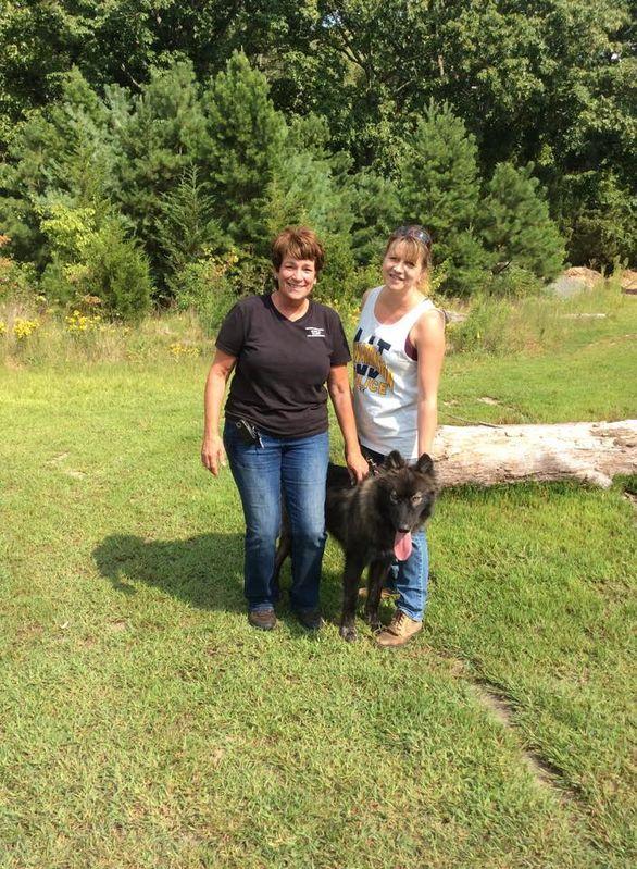Kira, Howling Woods Farm, September 2016